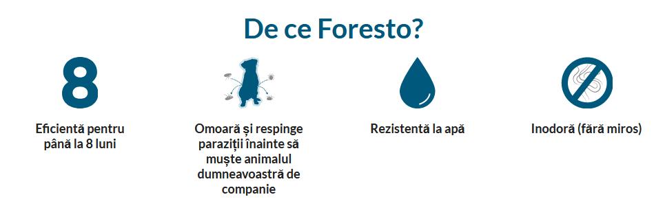 de ce zgarda Foresto Adavet-min
