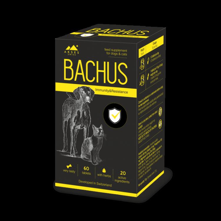 bachus_immunity_resistance 60 tb png