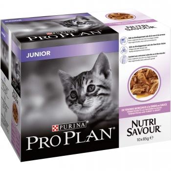 Purina Pro Plan hrana umeda kitten cu curcan 10x85gr